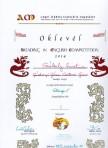 A READING IN ENGLISH angol nyelvű olvasási verseny döntőjébe iskolánkból 18 diák jutott be.